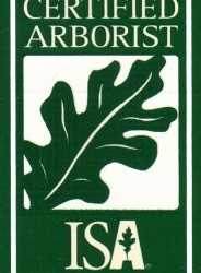 ISA Certified Arborist Twin Cities