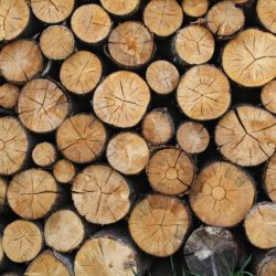 Twin Cities Firewood For Sale MN